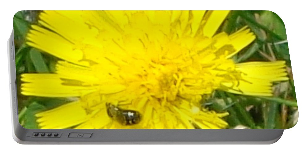 Flower Portable Battery Charger featuring the photograph Sunny Lunch by Christina Verdgeline