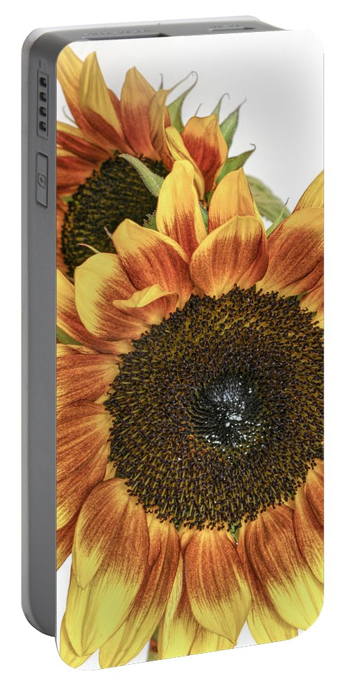 Floral Portable Battery Charger featuring the photograph Sunny Pair by David and Carol Kelly