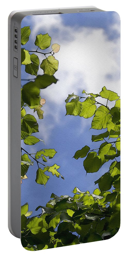Painterly Portable Battery Charger featuring the photograph Sunny Sky by Pati Photography