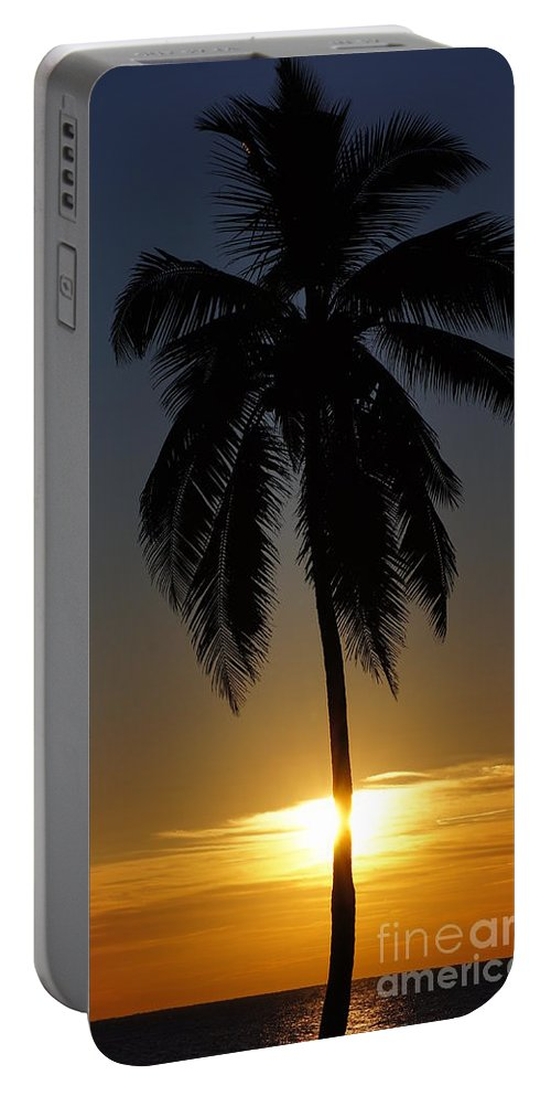 Beach Portable Battery Charger featuring the photograph Sunrise And Palm Tree by Paul Wilford