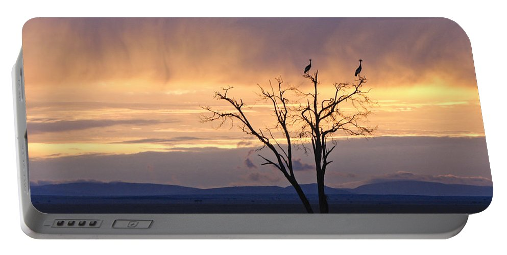 Africa Portable Battery Charger featuring the photograph Sunrise And Rain by Michele Burgess