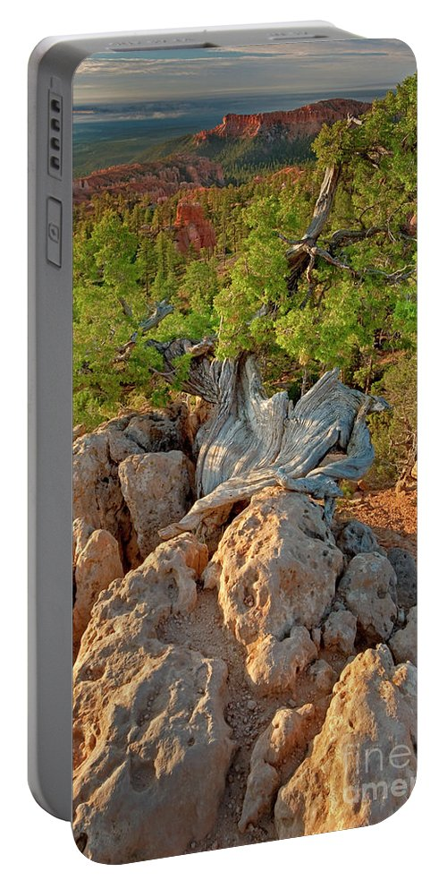 North America Portable Battery Charger featuring the photograph Sunrise At Bryce Canyon National Park Utah by Dave Welling