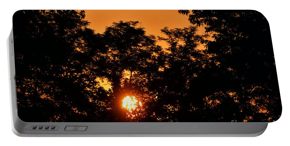 Sun Portable Battery Charger featuring the photograph Sunrise In The Forest by Thomas Woolworth
