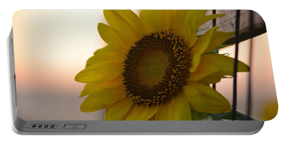 Sunrise Sunflower Portable Battery Charger featuring the photograph Sunrise Sunflower by Maria Urso