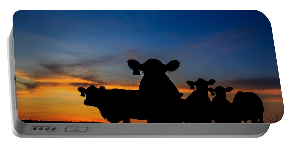 Cattle Portable Battery Charger featuring the photograph Sunset Serenade by Kelli Brown