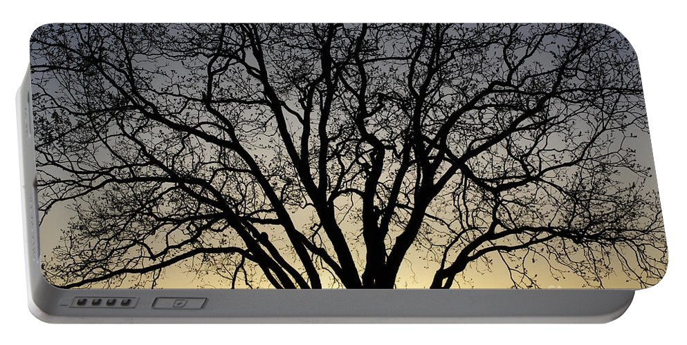 Sunset Portable Battery Charger featuring the photograph Sunset Tree by Gary Richards