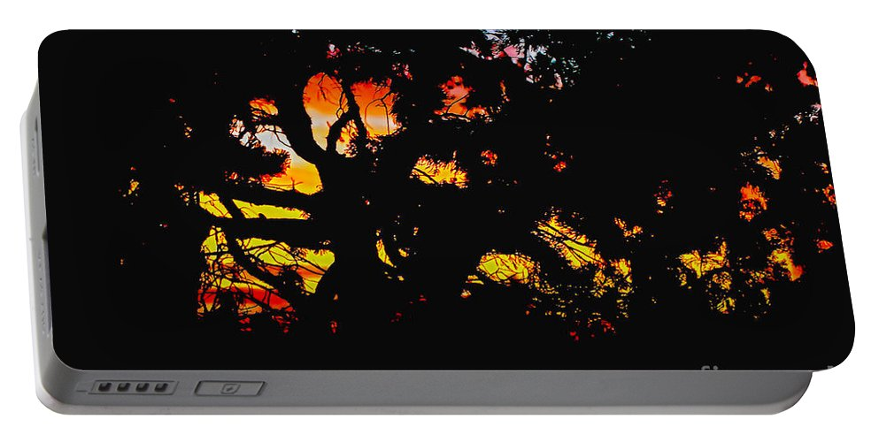 Claudia's Art Dream Portable Battery Charger featuring the photograph Sunset Viewed Through A Tree by Claudia Ellis