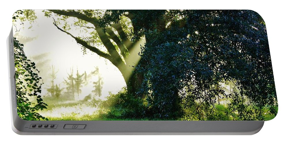 Sunshine Portable Battery Charger featuring the photograph Sunshine And Sunbeams by D Hackett