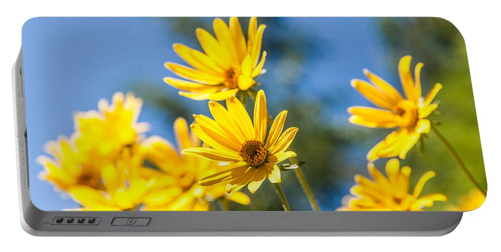 Flowers Portable Battery Charger featuring the photograph Sunshine by Chad Dutson