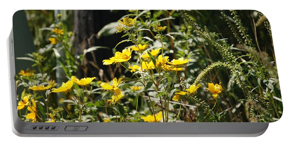 Wildflowers Portable Battery Charger featuring the photograph Sunshine Flower 3 by Lucy Bounds