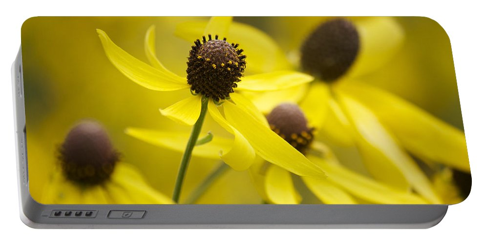 Yellow Coneflower Portable Battery Charger featuring the photograph Sunshine On A Cloudy Day by Penny Meyers