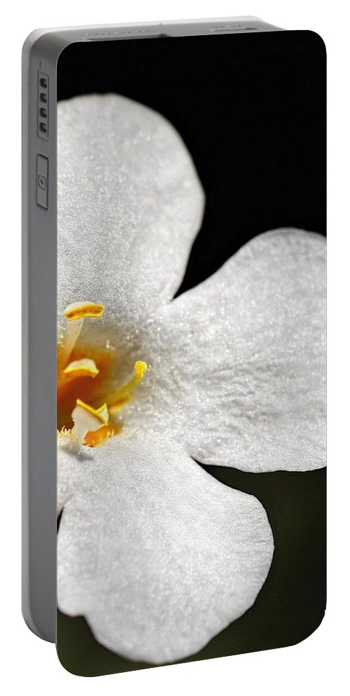 Flower Portable Battery Charger featuring the photograph Sunshine Smile by Kip Krause