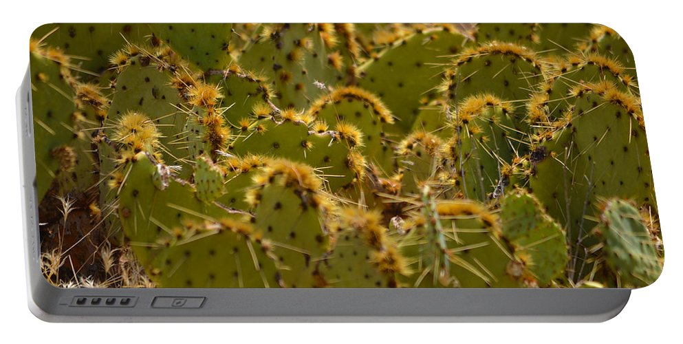 Cacti Portable Battery Charger featuring the photograph Super Cacti by Deprise Brescia