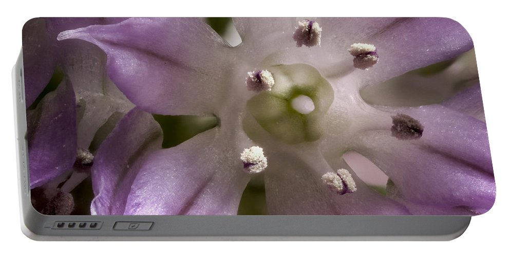 Jean Noren Portable Battery Charger featuring the photograph Super Close Up Of A Chive Flower by Jean Noren