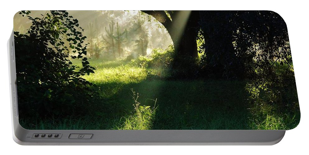 Sunshine Portable Battery Charger featuring the photograph Super Sunbeam by D Hackett