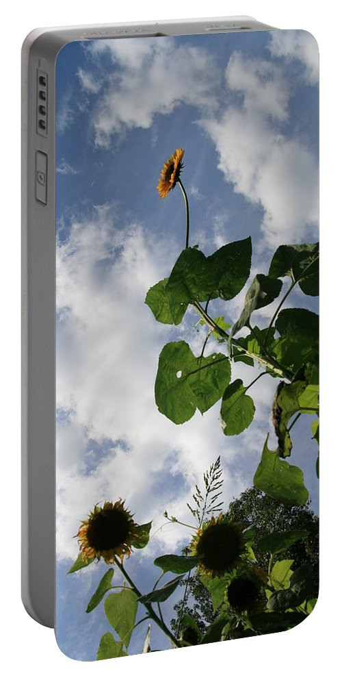 Sunflower Portable Battery Charger featuring the photograph Super Sunflower by Neal Eslinger