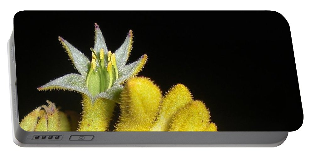 Flower Photograph Portable Battery Charger featuring the photograph Surprise by Michele Penn