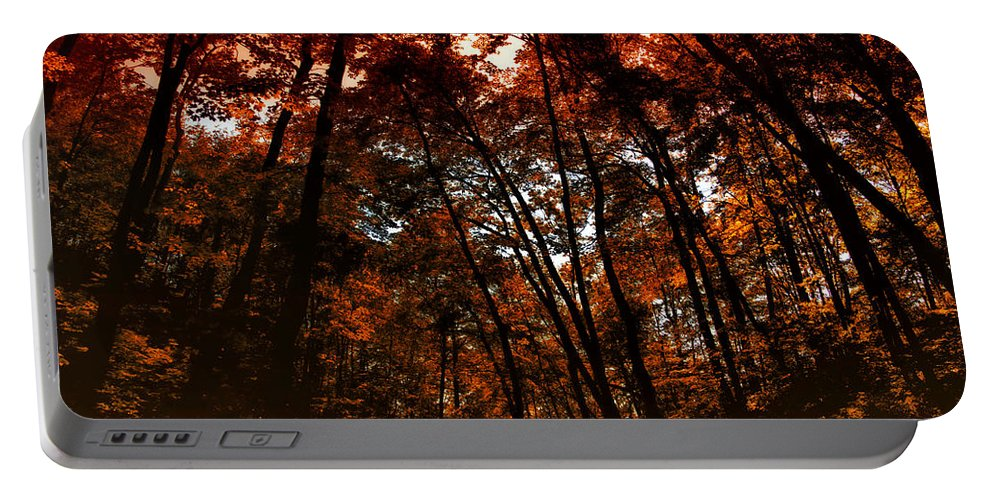Autumn Portable Battery Charger featuring the photograph Surrounded By Autumn by Thomas Woolworth