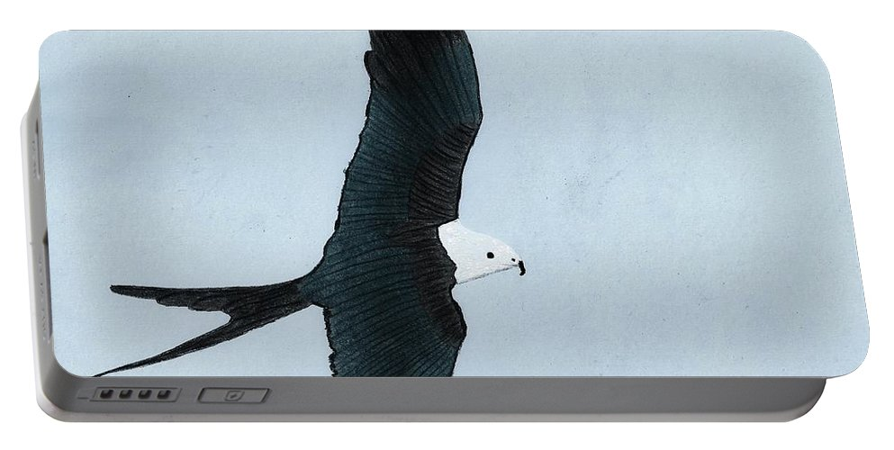 Bird Portable Battery Charger featuring the drawing Swallow Tailed Kite by D Hackett