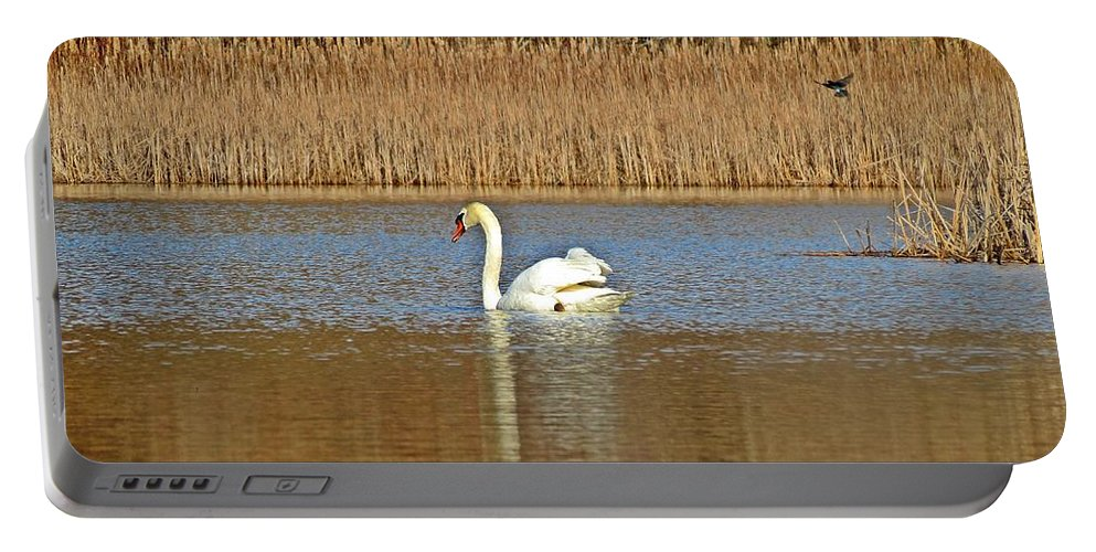 Swan Portable Battery Charger featuring the photograph Swan And Swallow by MTBobbins Photography