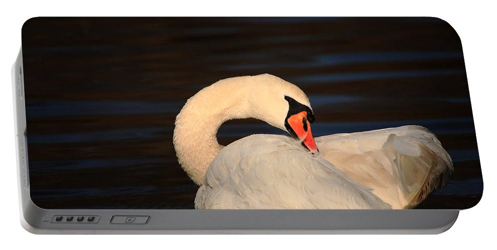 Swan Portable Battery Charger featuring the photograph Swan Grooming by Karol Livote