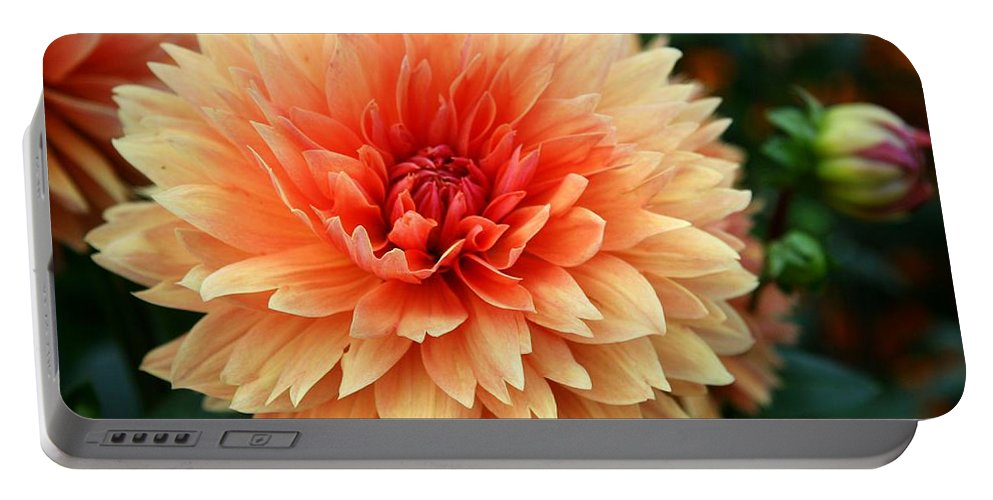 Dahlia Portable Battery Charger featuring the photograph Sweet Dahlia by Christiane Schulze Art And Photography