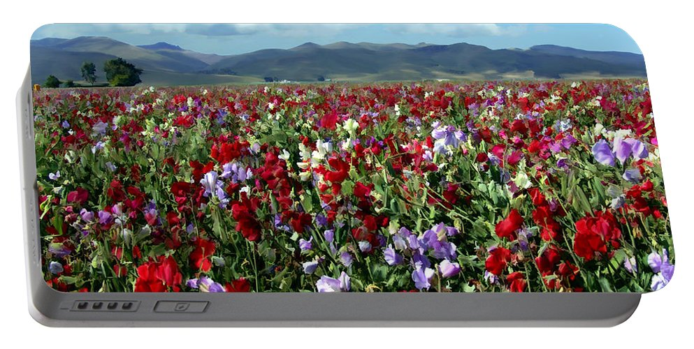 Flowers Portable Battery Charger featuring the photograph Sweet Peas Forever by Kurt Van Wagner