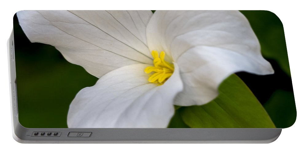 White Portable Battery Charger featuring the photograph Sweet White Trillium 5 by Jack R Perry
