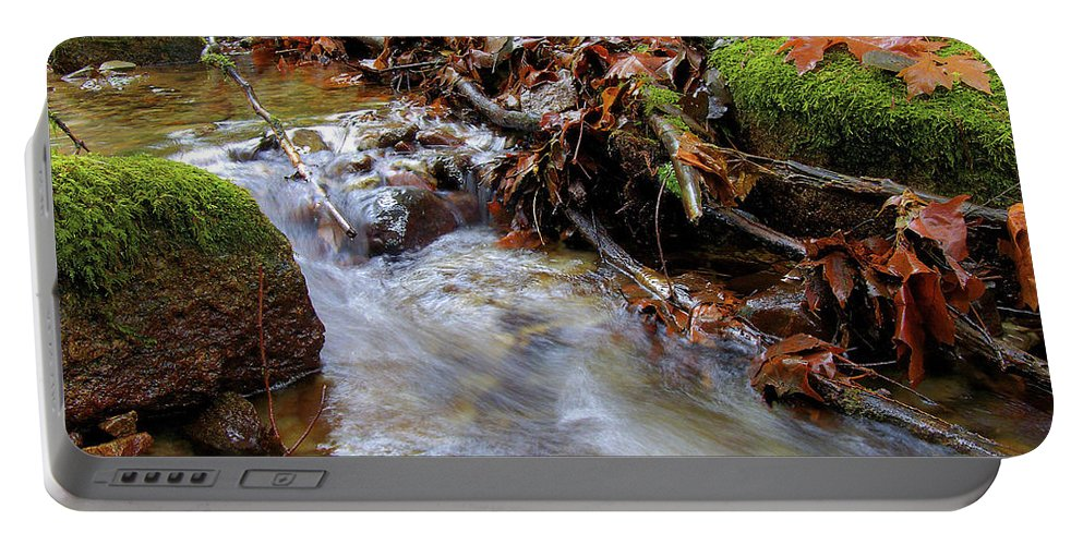Creek Portable Battery Charger featuring the photograph Swept Away by Sharon Talson