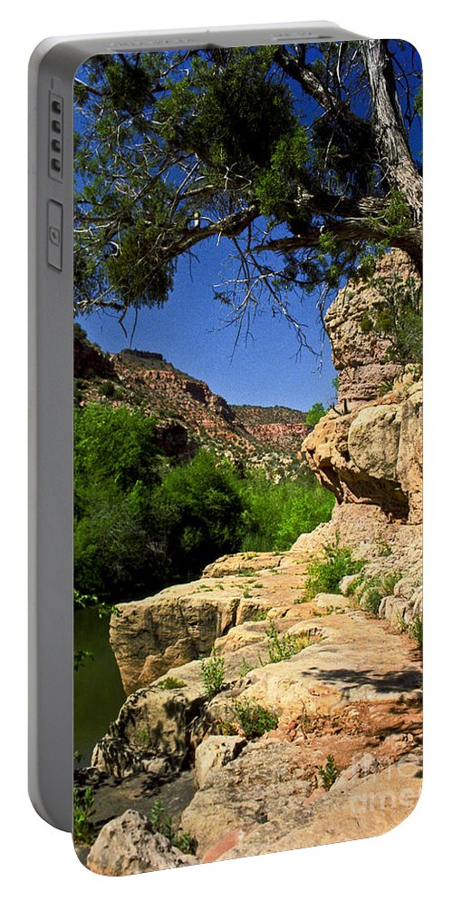 Arizona Portable Battery Charger featuring the photograph Sycamore Canyon by Kathy McClure