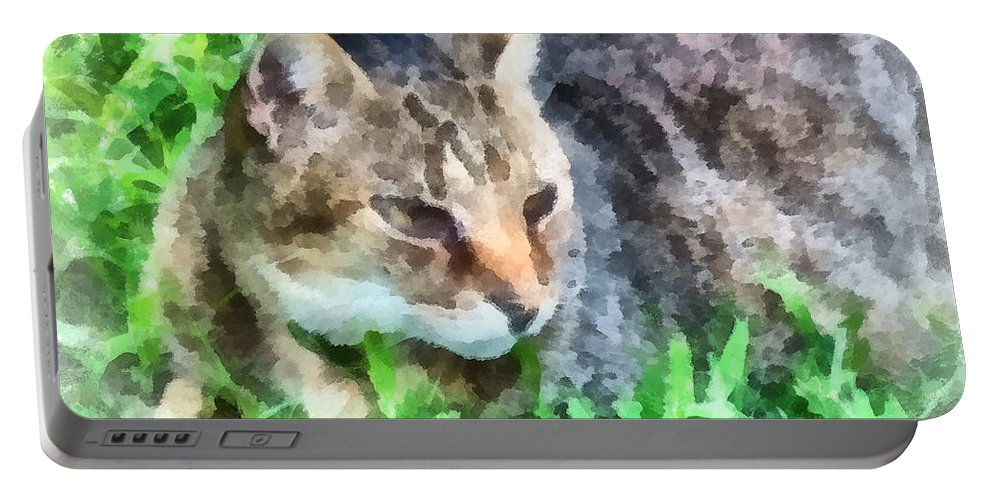 Cat Portable Battery Charger featuring the photograph Tabby Cat Closeup by Susan Savad