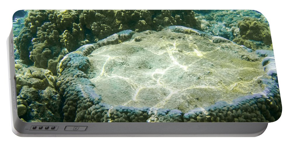 Living Coral Portable Battery Charger featuring the photograph Table Top Coral by Denise Bird