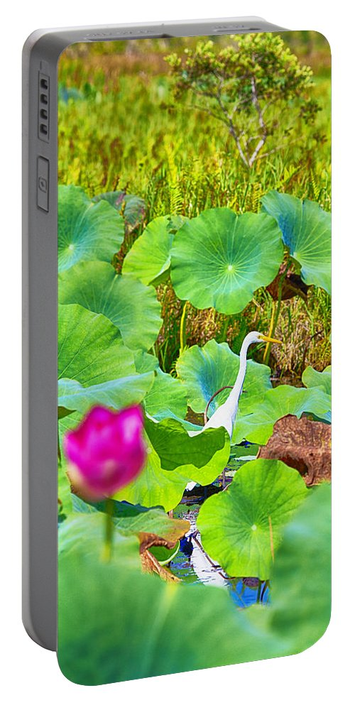 Lotus Flower Portable Battery Charger featuring the photograph Tail-end Of The Wet Season by Douglas Barnard