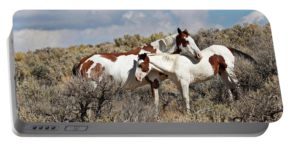 Horses Portable Battery Charger featuring the photograph Take Me As I Am by Athena Mckinzie