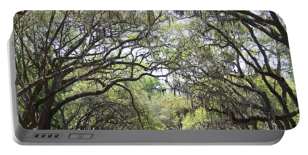 Tree Portable Battery Charger featuring the photograph Take Me Home by Andrea Anderegg
