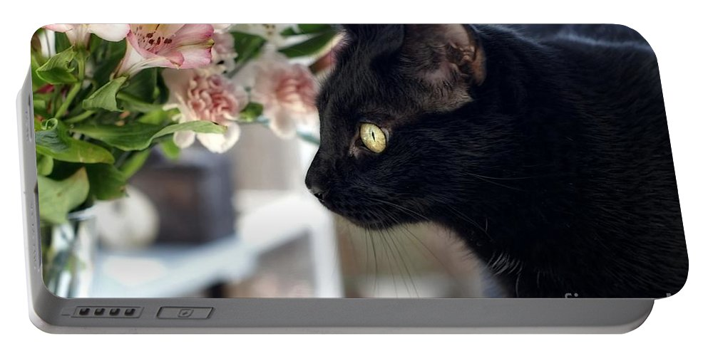 Black Cat Portable Battery Charger featuring the photograph Take Time To Smell The Flowers by Peggy Hughes