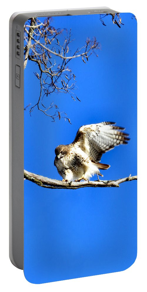Rth Portable Battery Charger featuring the photograph Takeoff by Art Dingo