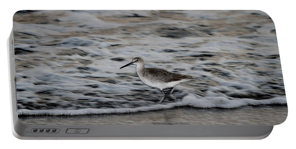 Bird Portable Battery Charger featuring the photograph Taking A Walk by Cynthia Guinn