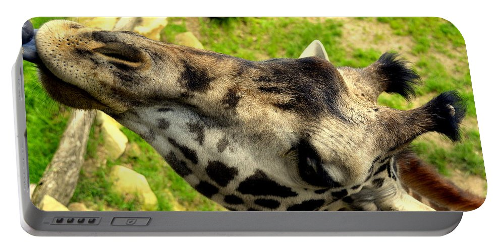 Giraffe Portable Battery Charger featuring the photograph Tall Blonde Eating A Cracker by Kathy Barney
