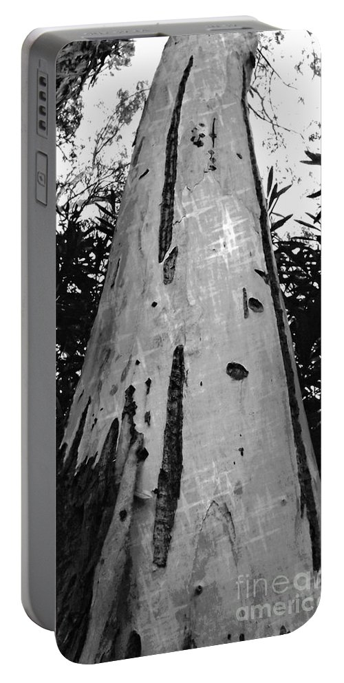 Tree Portable Battery Charger featuring the photograph Tall by Clare Bevan