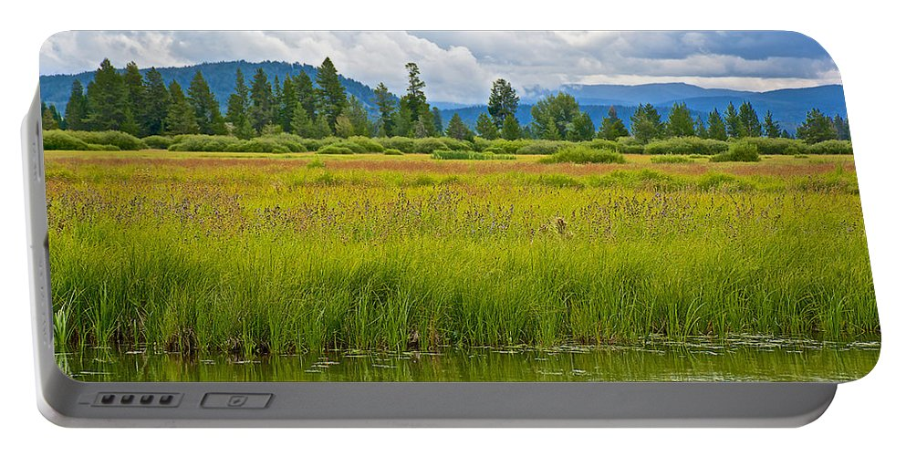 Tall Grasses In Swan Lake In Grand Teton National Park Portable Battery Charger featuring the photograph Tall Grasses In Swan Lake In Grand Teton National Park-wyoming by Ruth Hager