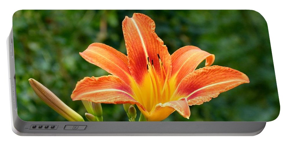 Tangerine Lily Portable Battery Charger featuring the photograph Tangerine Lily by Will Borden