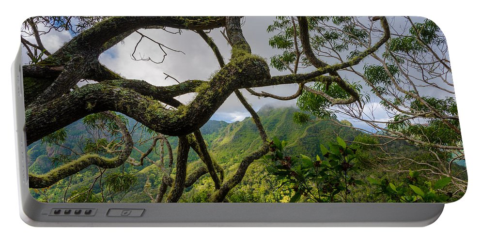 Trees Portable Battery Charger featuring the photograph Tangled Mess by Nikolai Martusheff