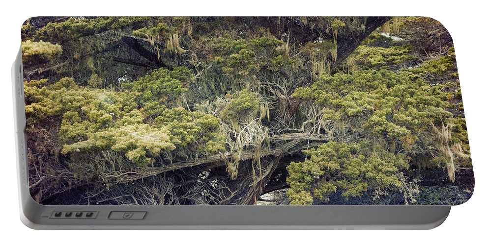 Lone Cypress Portable Battery Charger featuring the photograph Tangled Neighbors Of The Lone Cypress by Angela Stanton