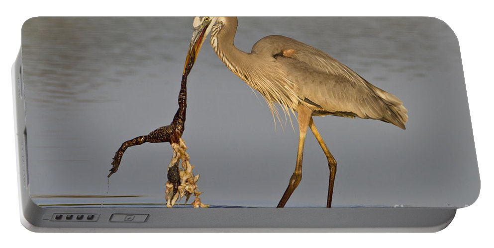 Great Blue Heron Portable Battery Charger featuring the photograph Tastes Like Chicken by Bryan Keil
