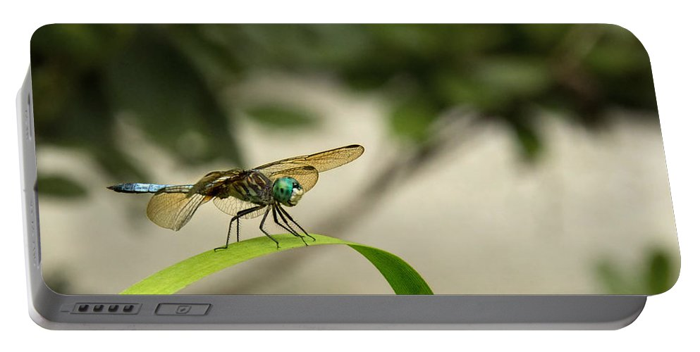 Teal Dragonfly Portable Battery Charger featuring the photograph Teal Dragonfly by Jemmy Archer