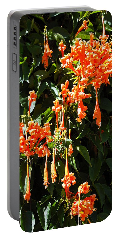 Flower Portable Battery Charger featuring the photograph Teardrop Orange by Aimee L Maher ALM GALLERY