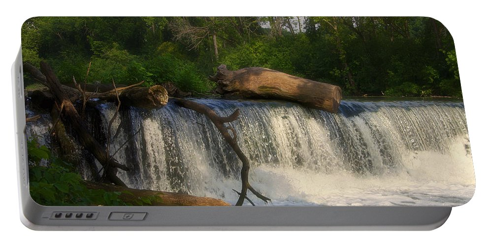Marsh Portable Battery Charger featuring the photograph Teeter Totter Log by Thomas Woolworth