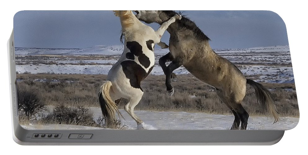 Mccullough Peaks Wild Mustang Portable Battery Charger featuring the photograph Teeth And Hooves by Elaine Haberland