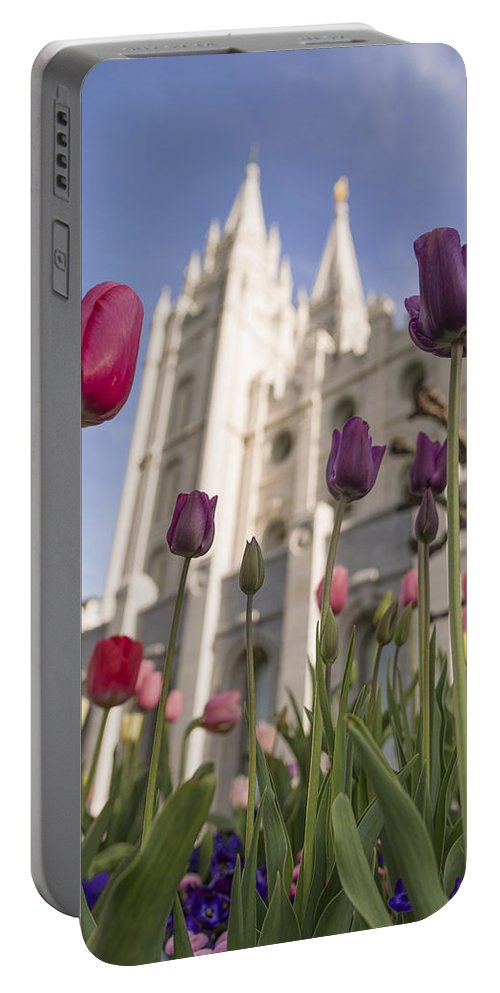 Temple Tulips Portable Battery Charger featuring the photograph Temple Tulips by Chad Dutson